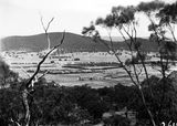 Picture relating to Northbourne Avenue - titled 'Hotel Ainslie, Northbourne Oval & Northbourne Avenue from Mt Ainslie.'