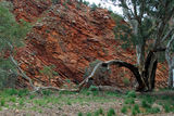 Picture relating to Brachina Gorge - titled 'Brachina Gorge'