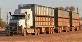 Picture relating to Ti-Tree - titled 'Cattle Roadtrain Ti-Tree  NT'