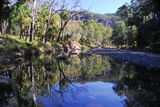 Picture relating to Carnarvon Gorge - titled 'Carnarvon Gorge'