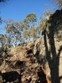 Picture relating to Black Mountain Reserve - titled 'Rocky outcrops'