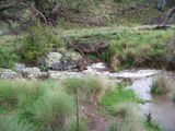 Picture relating to Danswell Creek - titled 'Danswell Creek'