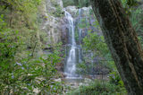 Picture of / about 'Minamurra Falls' New South Wales - Minamurra Falls