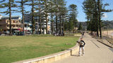 Picture relating to Dee Why Beach - titled 'Dee Why Beach'
