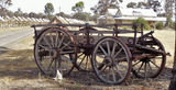 Picture relating to Minyip - titled 'Bullock Dray Minyip'