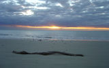 Picture relating to Cape Tribulation - titled 'Sunrise, Cape Tribulation'