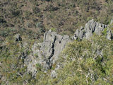 Picture relating to Bungonia State Conservation Area - titled 'Jagged Rock Spur'