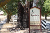 Picture relating to Lyndoch - titled 'Lyndoch '