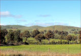 Picture relating to Blayney - titled 'Windfarm - Blayney - NSW'