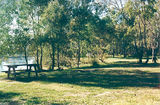 Picture relating to Browns Plains - titled 'Browns Plains: Murray River Reserves - Doolans Bend'