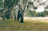 Picture relating to Tocumwal - titled 'Tocumwal Regional Park; Apex Beach'
