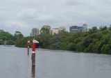 Picture relating to Parramatta River - titled 'Parramatta skyline from the Parramatta River'