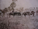 Picture relating to Greenvale - titled 'Greenvale'