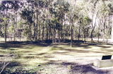 Picture relating to Paddys Ranges State Park - titled 'Paddys Ranges State Park; Karri Camp Ground'