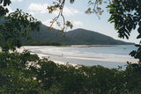 Picture relating to Cape Tribulation - titled 'Cape Tribulation'
