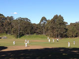 Cricket on Artarmon Oval