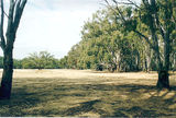 Picture of / about 'Cobram' New South Wales and Victoria - Cobram State Forest - Tocumwal: Bourchiers Beach