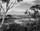 Picture relating to Anzac Parade - titled 'View from Mt Ainslie along Anzac Parade to Old Parliament House. Site for the Australian War Memorial in front.'
