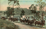 Picture relating to Enoggera - titled 'Picnic at Enoggera Reservoir, Brisbane'