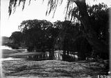 Picture relating to Acton - titled 'Molonglo river scene, Acton pool, swimming hole near Canberra Hospital.'