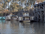 Picture relating to Echuca - titled 'Echuca'
