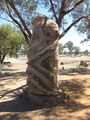 Picture of / about 'Bourke' New South Wales - Fred Hollows Memorial