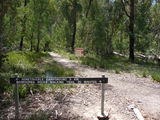 Picture relating to Booroomba Rocks - titled 'Booroomba Rocks - start of the walking track'