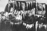 Picture relating to Tin Can Bay - titled 'Two fishermen displaying their catch at Tin Can Bay, ca. 1925'