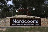Picture of / about 'Naracoorte' South Australia - Naracoorte
