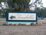 Picture relating to Chinchilla - titled 'Chinchilla'
