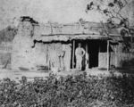 Picture relating to Stanthorpe - titled 'Rough bush dwelling, Stanthorpe ca. 1872'