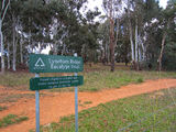 Picture relating to Lyneham Ridge - titled 'Lyneham Ridge Eucalypt Trial'