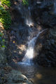 Picture relating to Dorrigo National Park - titled 'Dorrigo National Park - Tristania Falls'