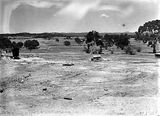 Picture relating to Acton - titled 'Preparation of site for CSIR, Clunies Ross Street, Acton, Black Mountain, looking to the east.'