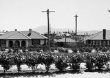Picture relating to Forrest - titled 'FCC cottages, Low voltage power lines and telephone lines in Barkly Crescent, Forrest.'
