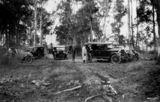 Picture relating to Oxley - titled 'Gathering of early model motor vehicles in the bush at Oxley, 1930'