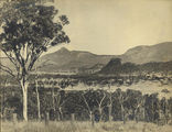 Picture relating to Boonah - titled 'Views around Coochin Coochin station, Queensland, ca. 1920'
