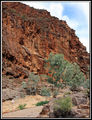 Picture relating to Arkaroola - titled 'Barraranna Gorge'