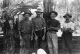 Picture of / about 'Landsborough' Queensland - Men of the Leach family, Landsborough, Queensland