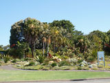 Picture relating to Mount Annan - titled 'Mount Annan Botanical Gardens 4'