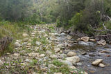 Picture relating to Feints Creek - titled 'Feints Creek'