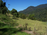 Picture relating to Numinbah Valley - titled 'Numinbah Valley'