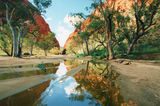 Picture relating to Ellery Creek - titled 'Ellery Creek'