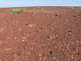 Picture relating to Birdsville Track - titled 'Birdsville Track'