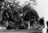 Picture relating to Bowen Hills - titled 'Statues and fountain in the Acclimatisation Gardens at Bowen Park, Brisbane, 1907'