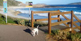 Picture relating to Esperance - titled 'Beach on tourist drive Esperance'