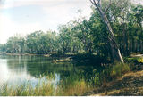 Picture relating to Wahgunyah - titled 'Wahgunyah: Murray Rv Reserves - Granthams Bend'