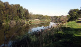 Picture relating to Barwon River - titled 'Barwon River at South Geelong'