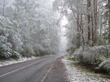 Picture relating to Donna Buang Road - titled 'A dusting of snow'