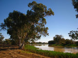 Picture of / about 'Cullyamurra Waterhole' South Australia - Cullyamurra Waterhole